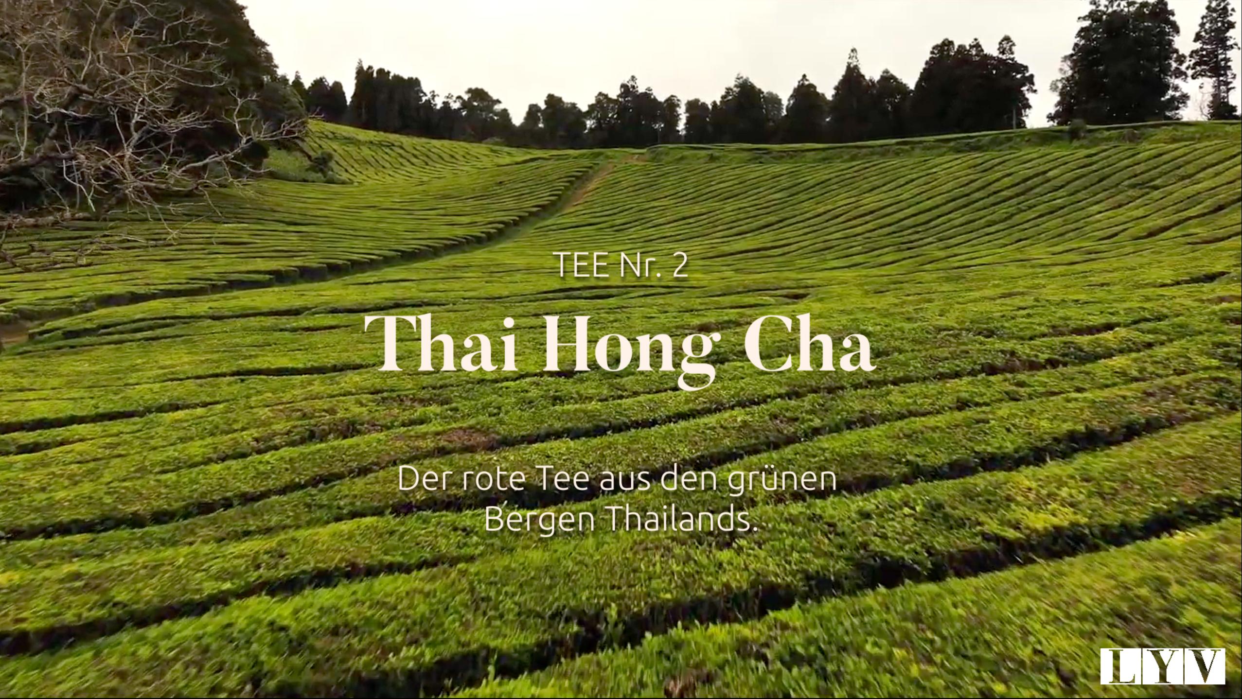 Teil 2: Thai Hong Cha