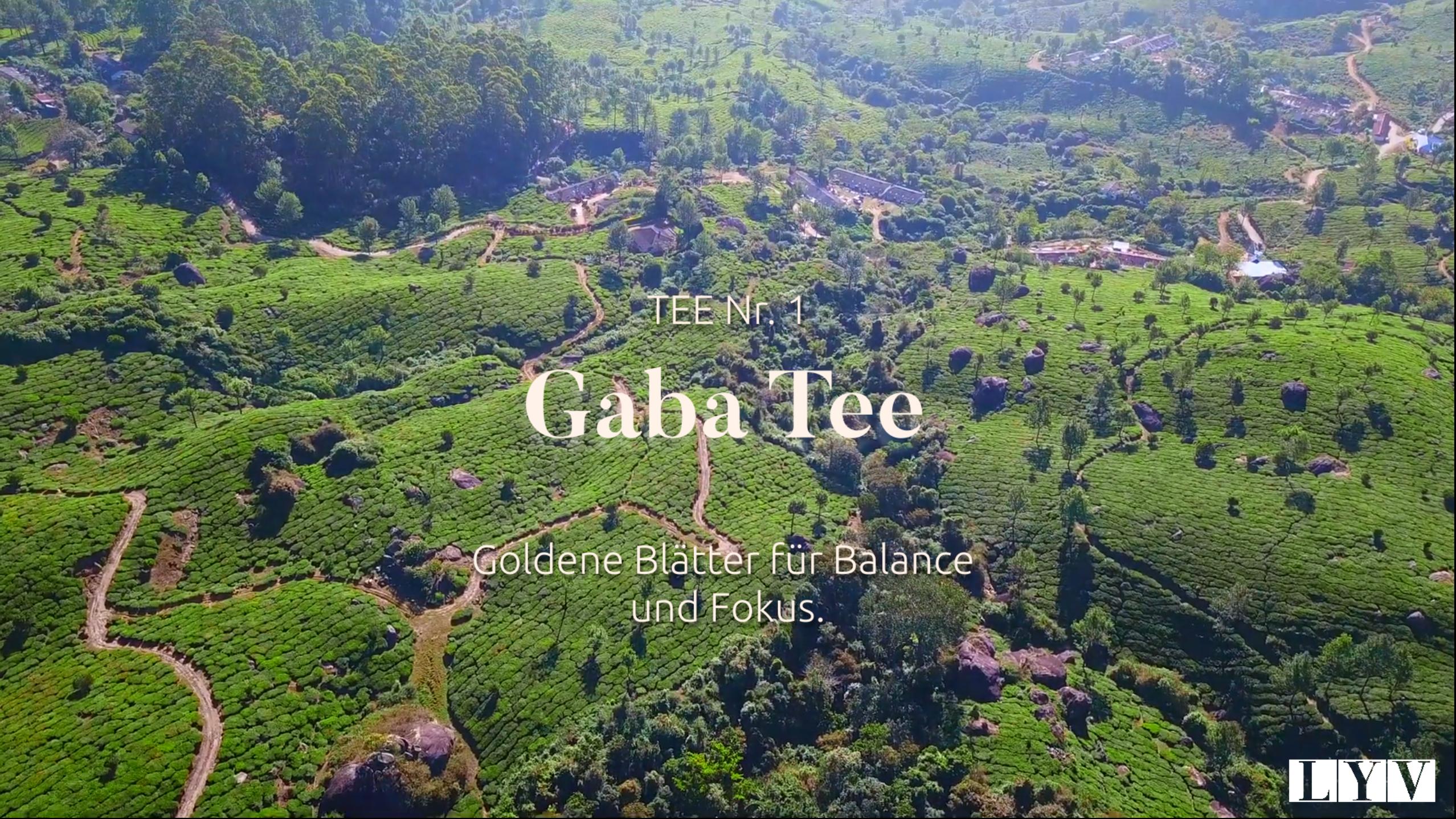 Teil 1: GABA Tee