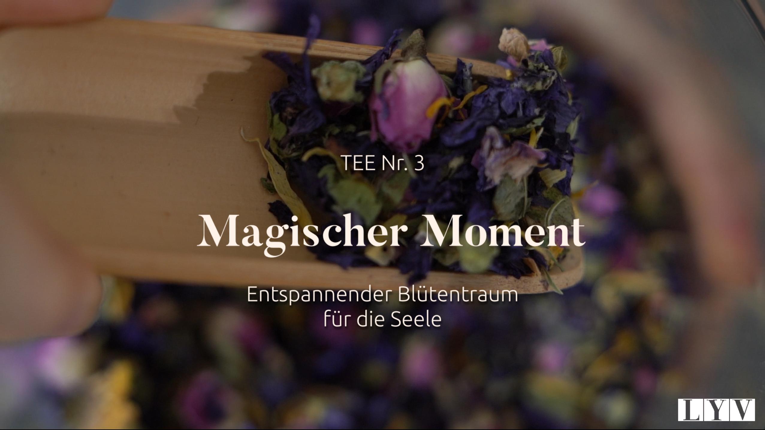 Teil 3: Magischer Moment